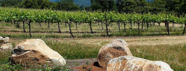 Terre rouge and easton wines amador vintners association - Association terre rouge ...