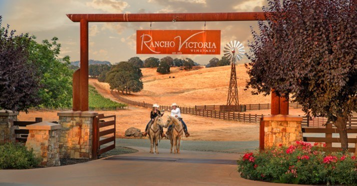 Rancho Victoria Vineyard Amador Vintners Association